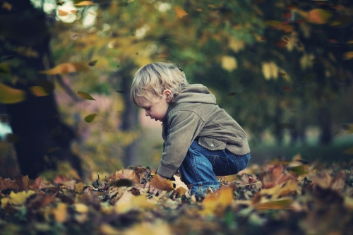 buscar-hojas